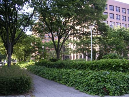 緑いっぱいの官庁街